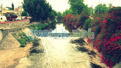 avenida-universidad-querétaro-río