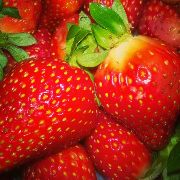 fresas-desayuno